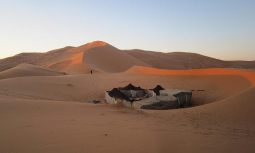 Dreams Of The Sahara: Road Junky's Oasis