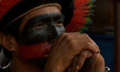 Make The Amazon Your Valentine