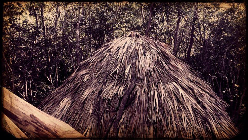 Finished fresh Guano Palm Roof for Toilet Zone.