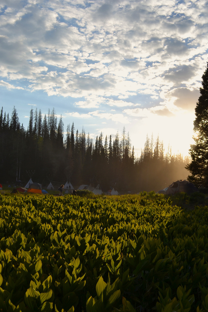 Sunrise at the Rainbow in the Uinta National Forest. Photo Flower.