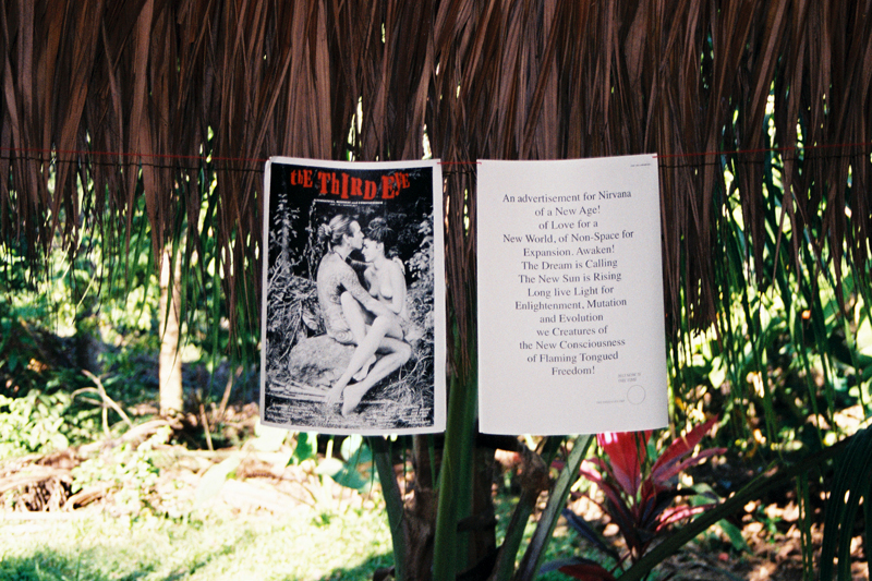 Art in the Jungle: A view on the exhibition of The Third Eye's first issue.