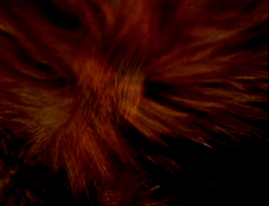 A still from Dog Star Man (1961-64) Directed by Stan Brakhage. Colour • Silent • 16mm • 74 mins.