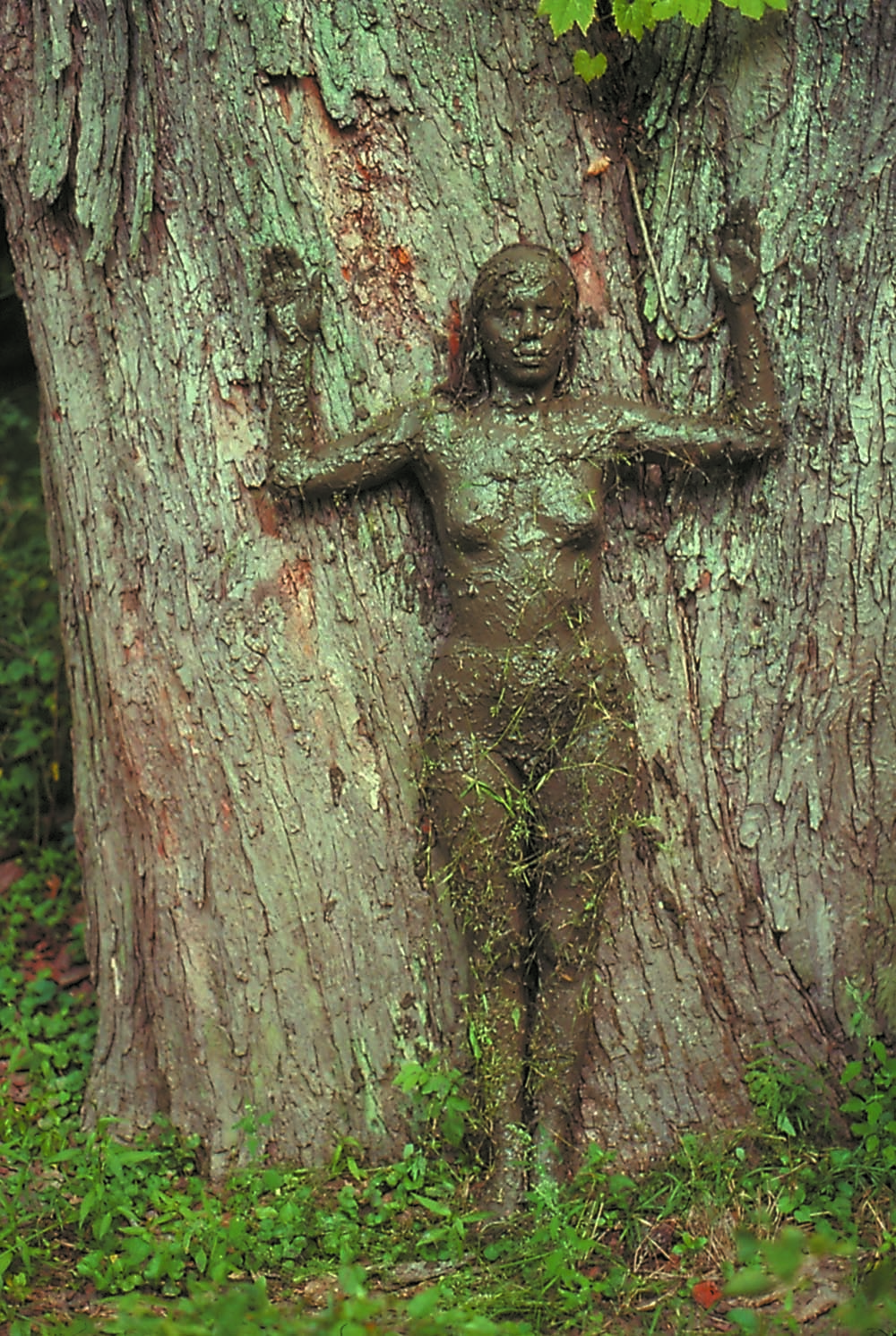 Arbol de la Vida (Tree of Life) (1976) by Ana Mendieta. Colour photograph, lifetime print, 50.8 x 33.7 cm