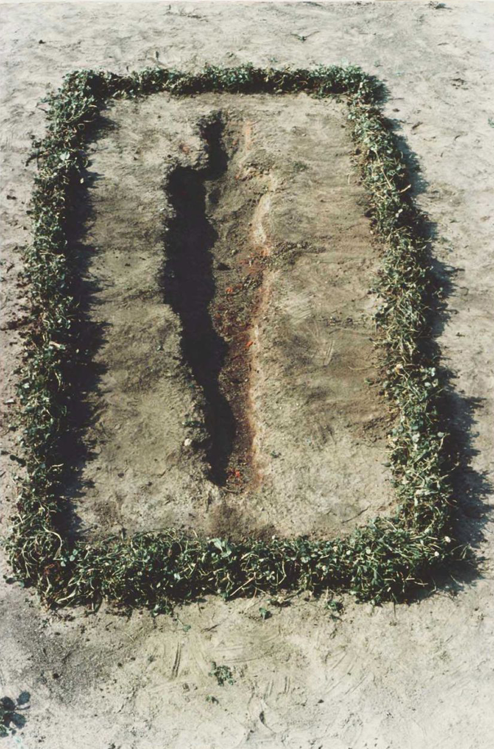 Untitled by Ana Mendieta. Made with Wood and Gunpowder. Colour Photograph, lifetime print.