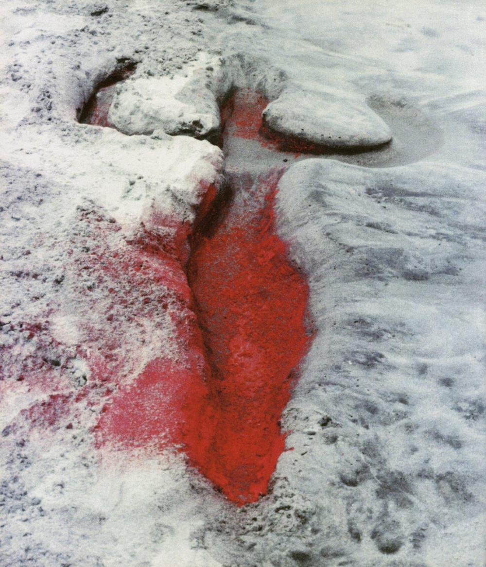Earth work 2. Untitled (Silueta Series, Mexico), 1976 by Ana Mendieta. Photographed in Mexico.