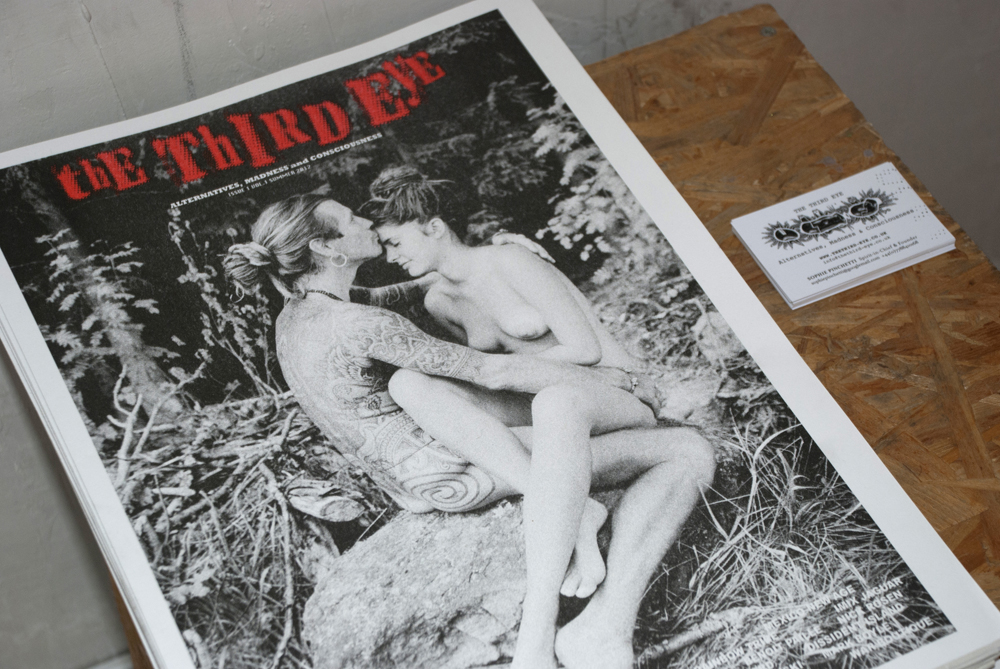 The Third Eye's current issue of the magazine... Next issue coming soon, expected before the end of 2013!