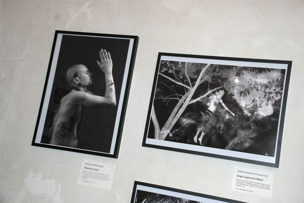 Meditating Flight (2007) by Antonio Florez alongside Jungle Suspension Ritual (2012) by Sophie Pinchetti.