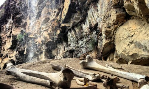 In The Footsteps Of The Chachapoya Warriors: Journey To Karajia