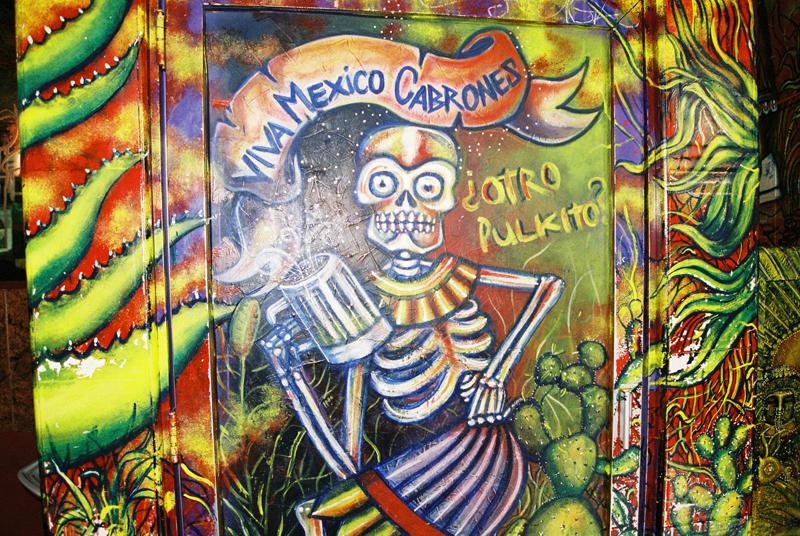 OTRO PULKITO?! VIVA MEXICO!