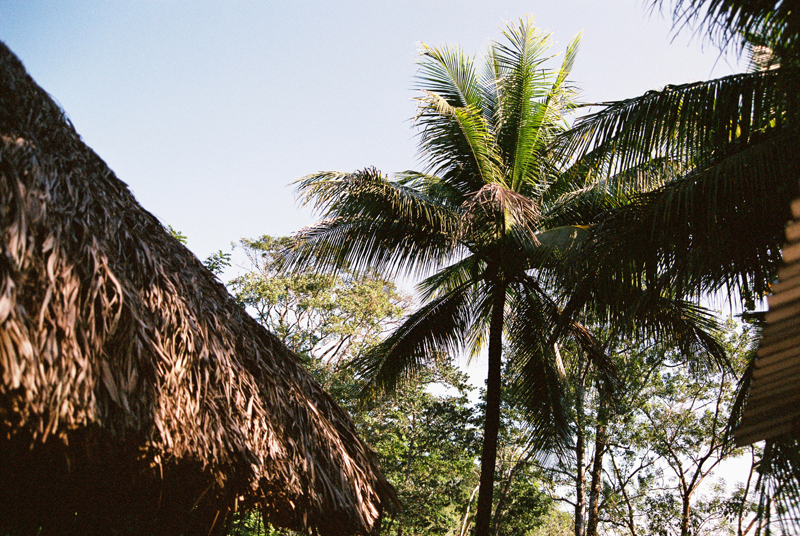 The Palapa hosting the exhibition in the jungle. Photo by Sophie Pinchetti.