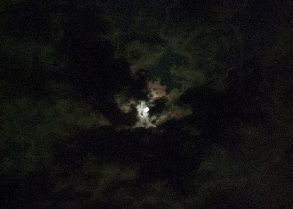 Haunting moonlight... (Perfect weather for vampires).