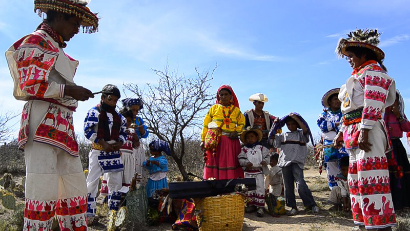 The Third Eye Magazine_Film_Huichols The Last Peyote Guardians Mexico-a film by Hernan Vilchez-24