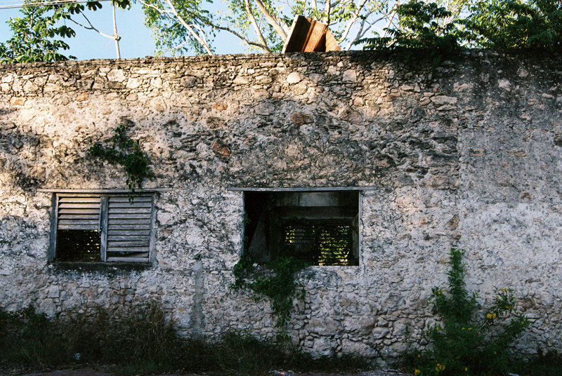 Nature reclaiming its space on an abandoned house in Bacalar.