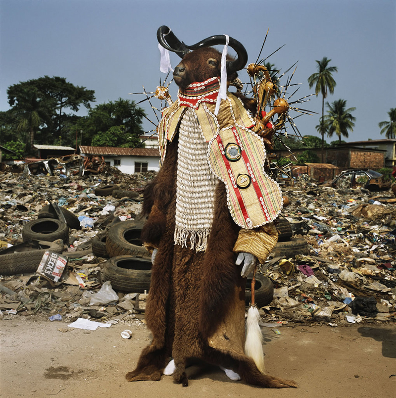 Water Buffalo Devil, Red Indians, Freetown, Sierra Leone, 2008.