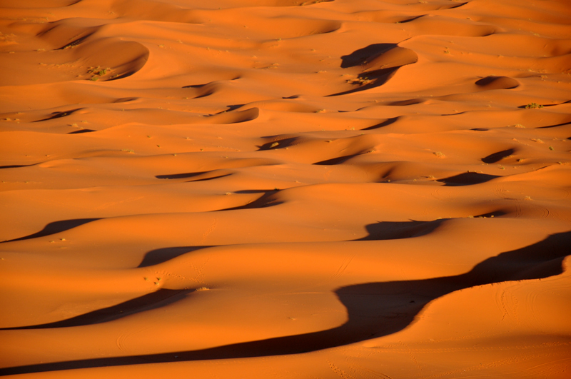 Late afternoon in the desert...Shadows in the Dunes...