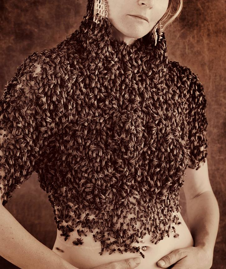 Sara Mapelli: ONE with 12,000 bees.