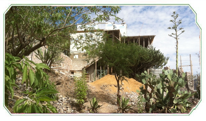 A view on The Golden Bee Retreat under construction in Guanajuato, Mexico. The Golden Bee Retreat is a collaborative project by Sara Mapelli and Theodore Holdt along with Architect David Chavez Chavez.