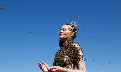 THE BEE QUEEN'S LATEST DANCE