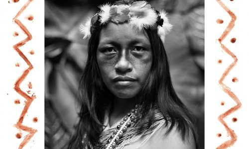 AMAZON GUARDIANS OF LIFE Fighting Against Big Oil