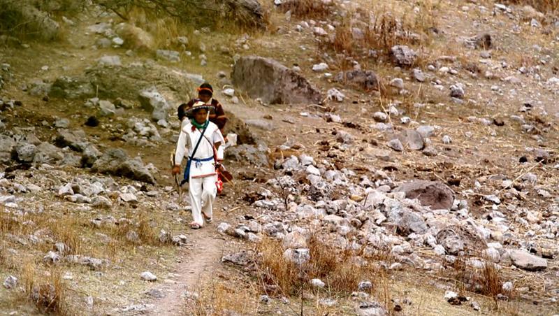 On the road of the pilgrimage to Wirikuta, San Luis Potosí, Mexico.