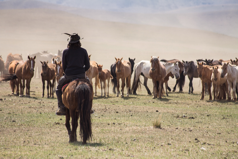 The Third Eye Magazine_Mongolia Horse Caravan_2015_09
